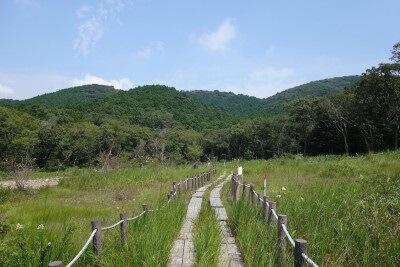 夏〜秋のハイキングにおすすめ!〜葦毛湿原を歩いてみました〜
