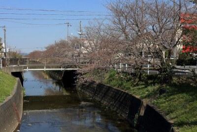 春爛漫♪スズキハウス袋井新屋の分譲地周りを歩いてみました!